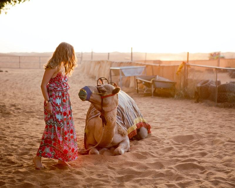 Evening Desert Safari with BBQ Dinner  Category