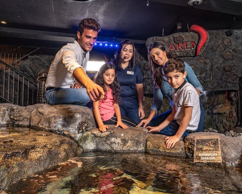 Dubai Aquarium And Underwater Zoo  Category