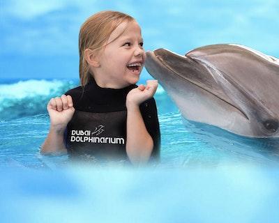 Dubai Dolphinarium  Discount