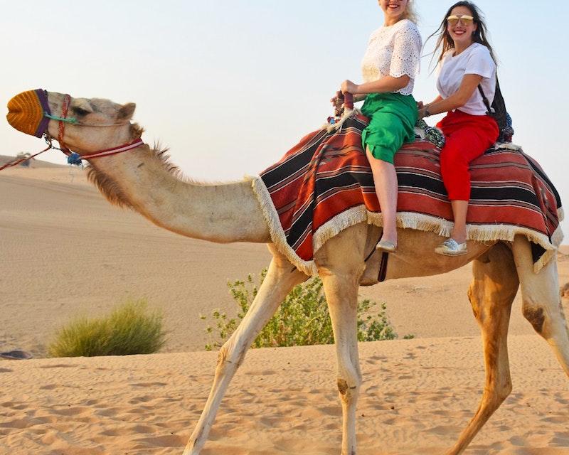 Dubai City Tour + Desert Safari   Discount
