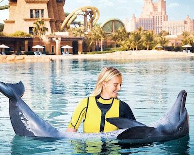 Dolphin Bay Atlantis