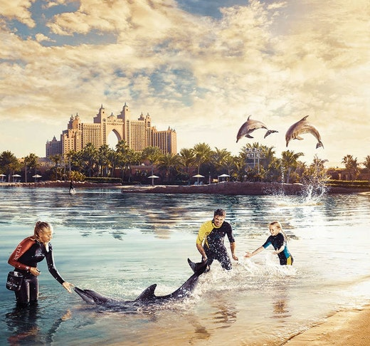 Dolphin Bay Atlantis  Price