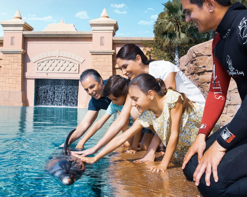 Dolphin Bay Atlantis  Ticket