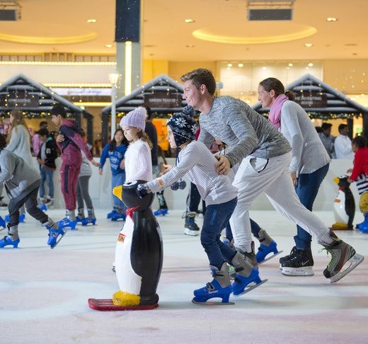 Dubai Ice Rink Tripx Tours