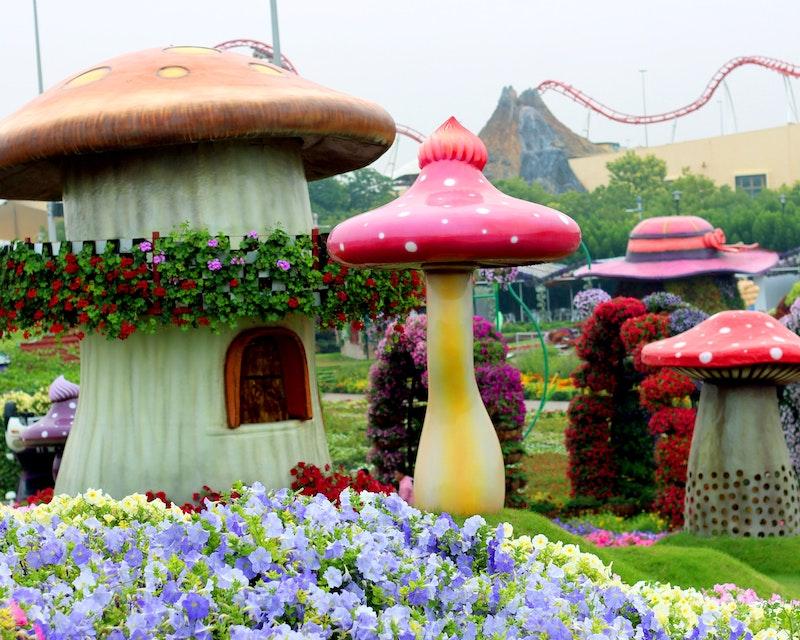 Dubai Miracle Garden Discount