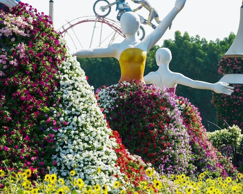 Dubai Miracle Garden Tripx Tours