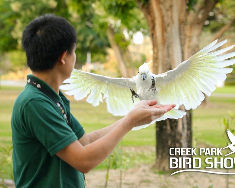 Dubai Dolphinarium: Creek Park Exotic Bird Show Location