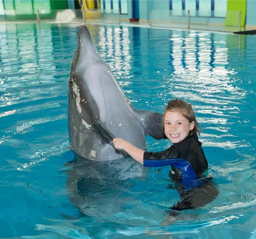 Dubai Dolphinarium: Swimming with Dolphins Discount