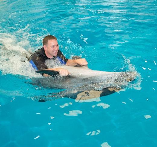 Dubai Dolphinarium: Swimming with Dolphins Ticket
