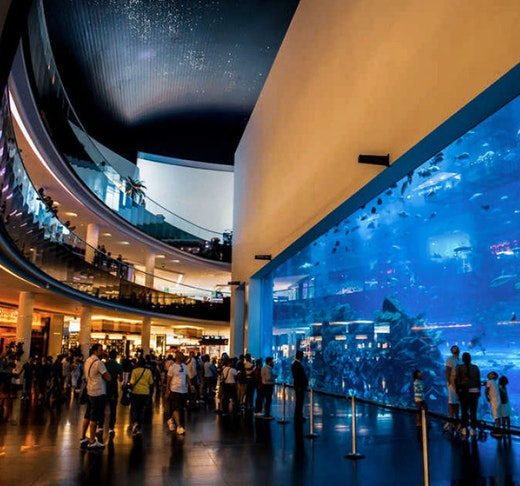 Dubai Mall Aquarium & VR Park Experience