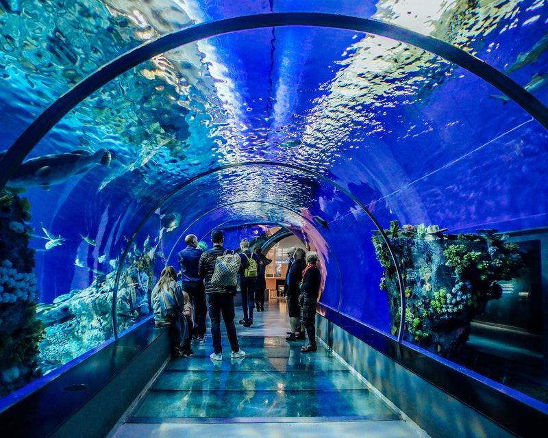 SEA Aquarium VIP Tours Location