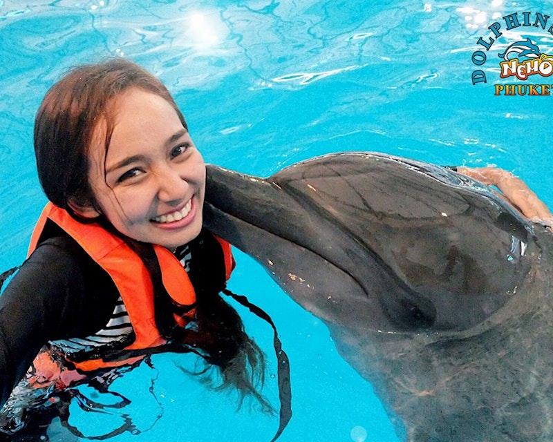 Dolphin Bay - Phuket Dolphin Show Ticket Ticket