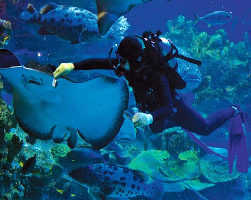 Aquaria KLCC Ticket