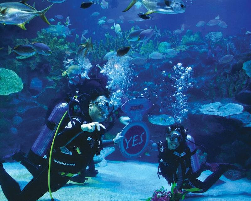 Aquaria KLCC Location