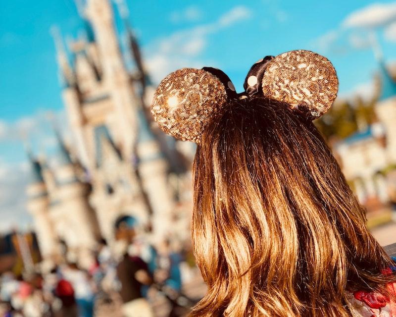 Disneyland Paris 1Day Ticket Ticket