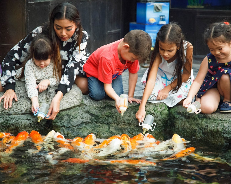 Underwater World Pattaya Price