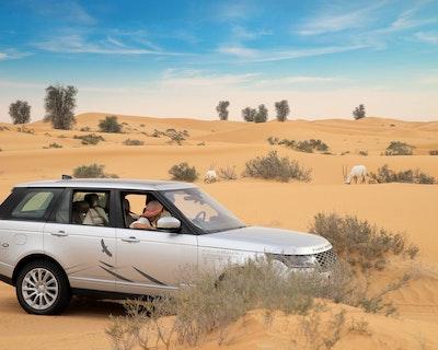 Platinum Desert Safari Discount
