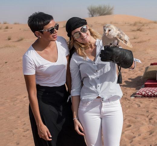Heritage Falconry and Wildlife Safari Discount