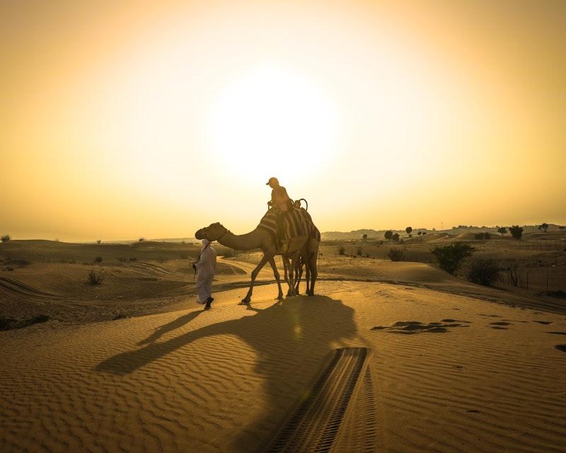 Sunset Camel Trekking With BBQ Dinner