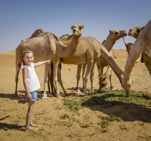 Overnight Red Dune Desert Safari with Dune Bashing BBQ & Breakfast Price