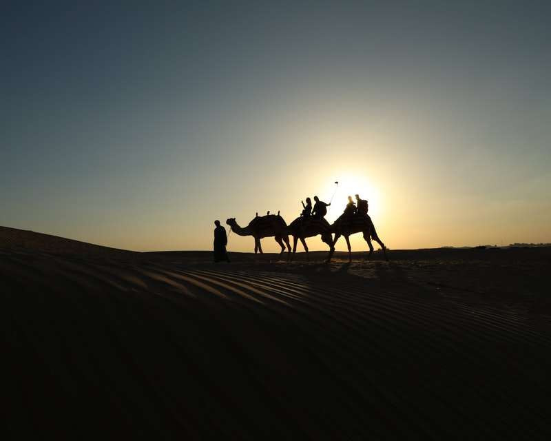 Sunrise Camel Trek With Breakfast