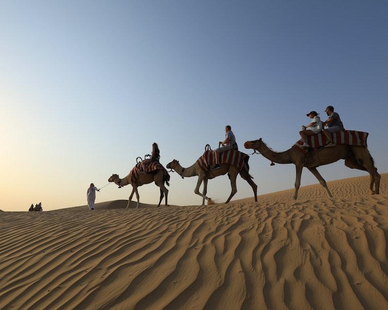 Sunrise Camel Trek With Breakfast Location