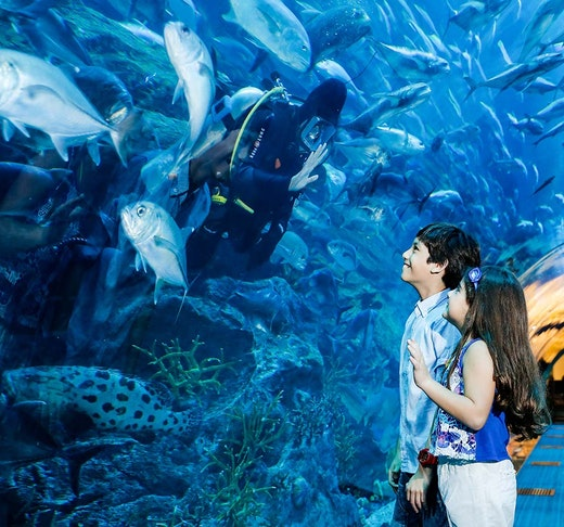 iVenture Dubai Select Attractions Pass Ticket