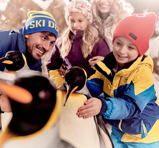 Ski Dubai - Snow Premium Pass