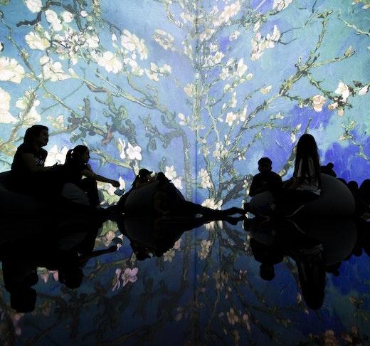 Theatre of Digital Art Dubai