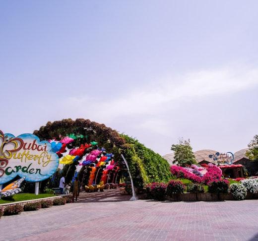 Dubai Butterfly Garden Location