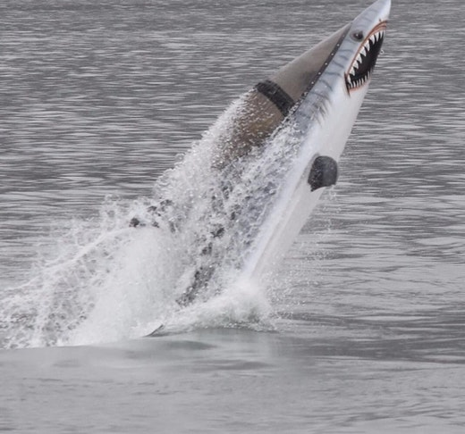 Seabreacher: The Ultimate Diving Machine Price