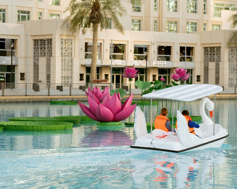 Dubai Fountain Pedal Swan Boats Location