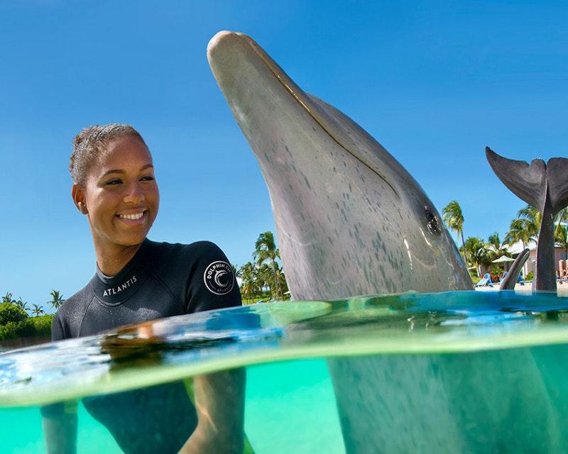 Atlantis Dolphin Photo Fun