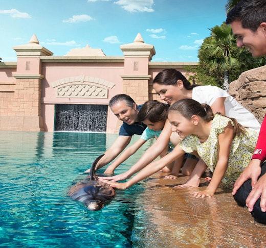 Atlantis Dolphin Photo Fun Location