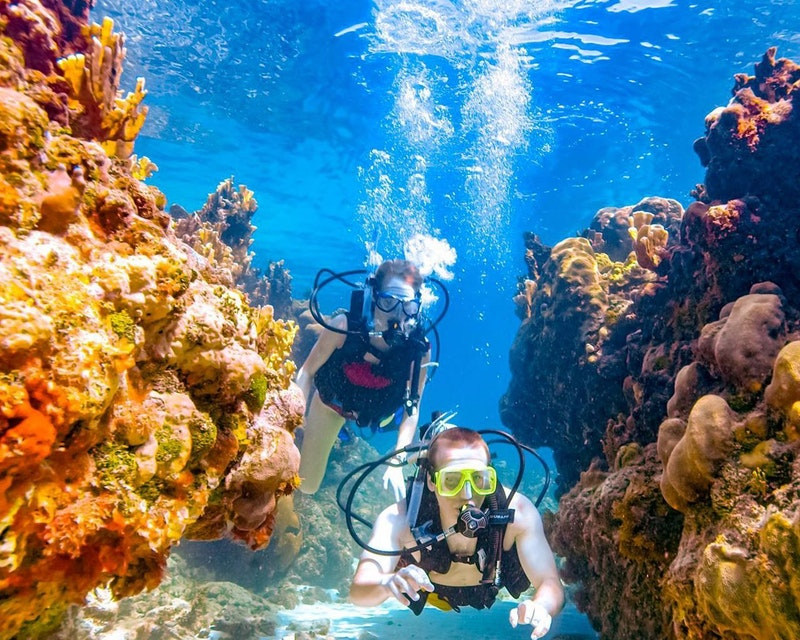 Scuba Diving Dubai Discount