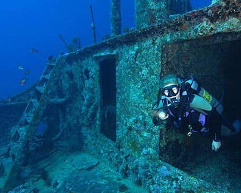 Scuba Diving Fujairah Discount