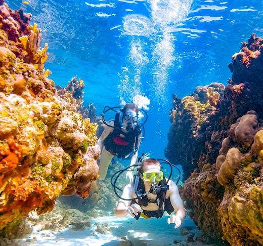 Scuba Diving Fujairah Price