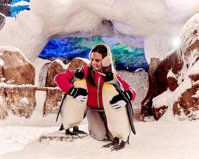 Ski Dubai: Snow Daycation Pass Discount