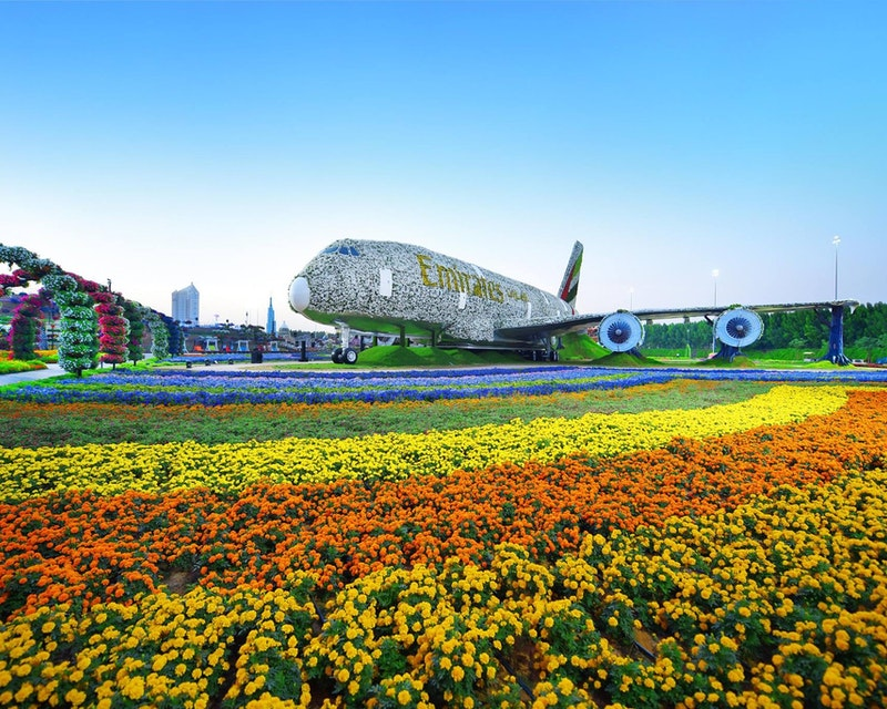 Combo: Miracle Garden & Global Village Tickets + Transfers Ticket