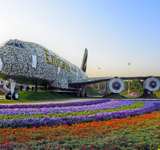 Combo: Miracle Garden & Global Village Tickets + Transfers